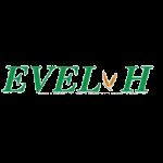 parteneri - EVEL-H-COMPANY11