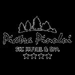 parteneri - piatra-pinului-logo